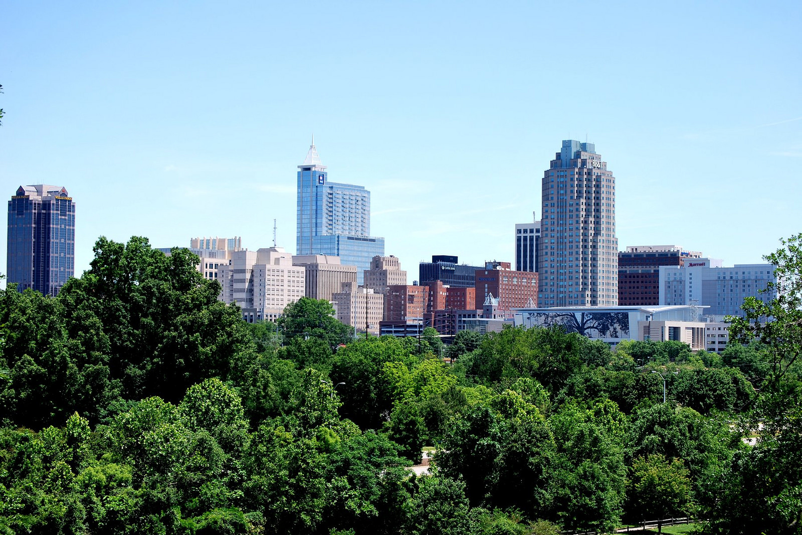city of Raleigh image